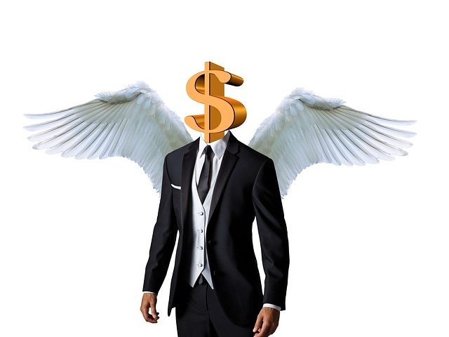 Role of Angel Investor